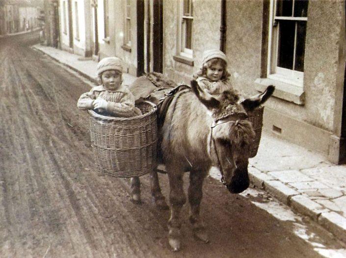Donkey & children, 59 New Exeter Street, Chudleigh